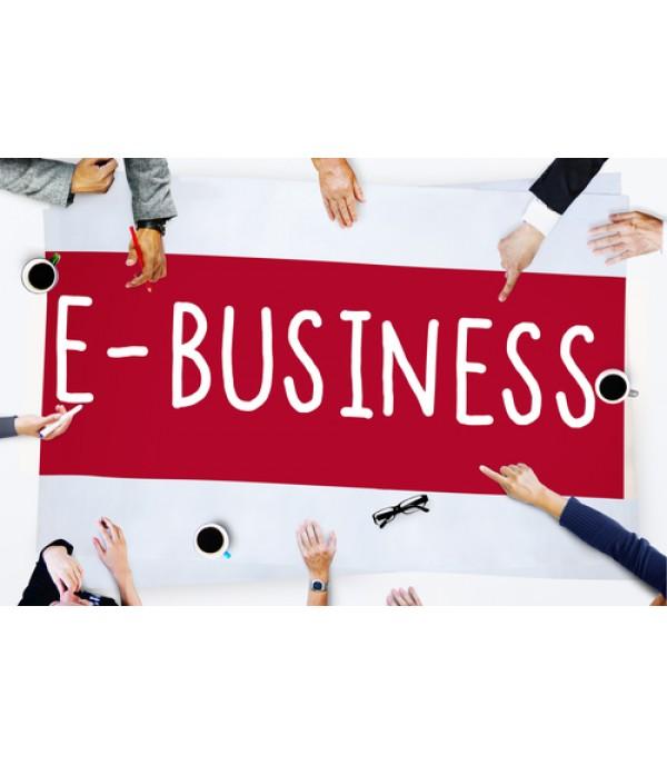 E-Business Strategy